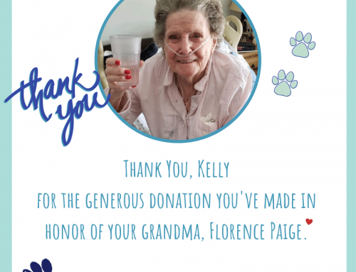We have received a very generous donation from our supporter Kelly, in honor of her grandm…