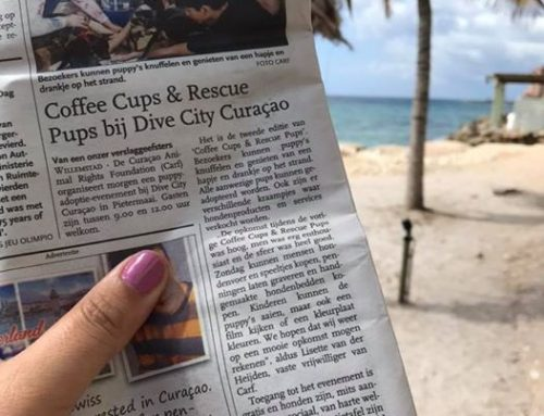 Yippee! Coffee Cups & Rescue Pups – Christmas Edition has made it into the newspaper. …
